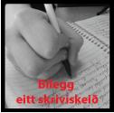 bilegg1skeid_01
